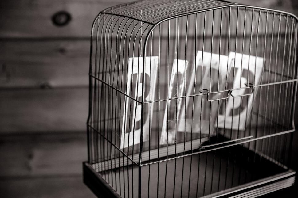 Download Free Stock HD Photo of B,I,R,D letters in a cage Online