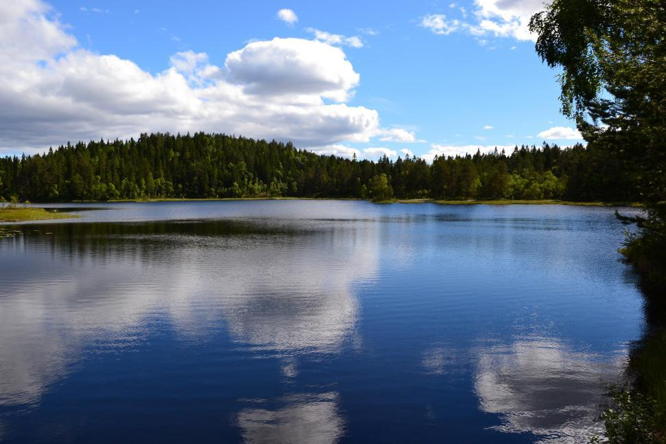 Download Free Stock HD Photo of Calm forest lake Online