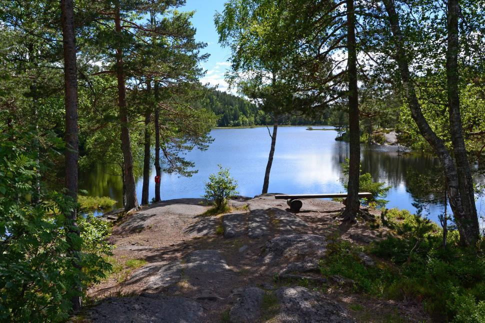 Download Free Stock HD Photo of Lake in the woods Online