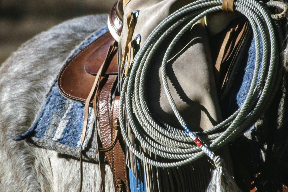 Download Free Stock HD Photo of Cowboy with rope Online