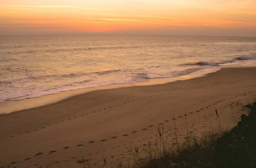 Free image of Early morning view of footprints in the sand near a sea.