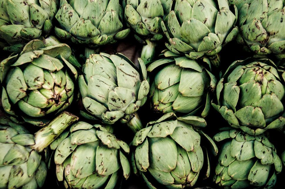 Download Free Stock HD Photo of Artichoke Online