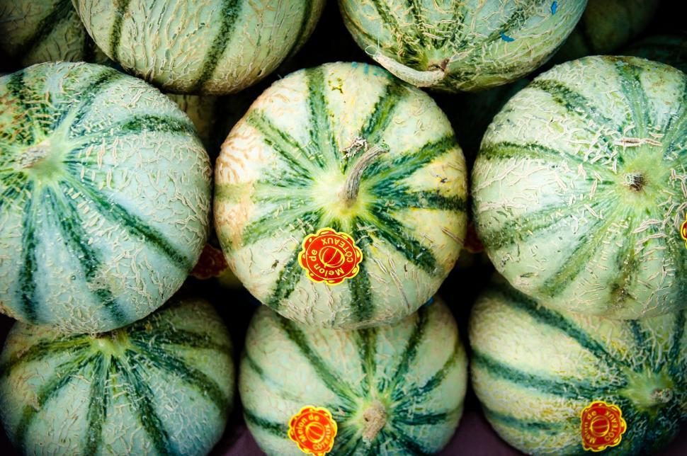 Download Free Stock HD Photo of Melons melon Online