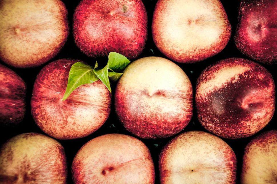 Download Free Stock HD Photo of Peaches Online