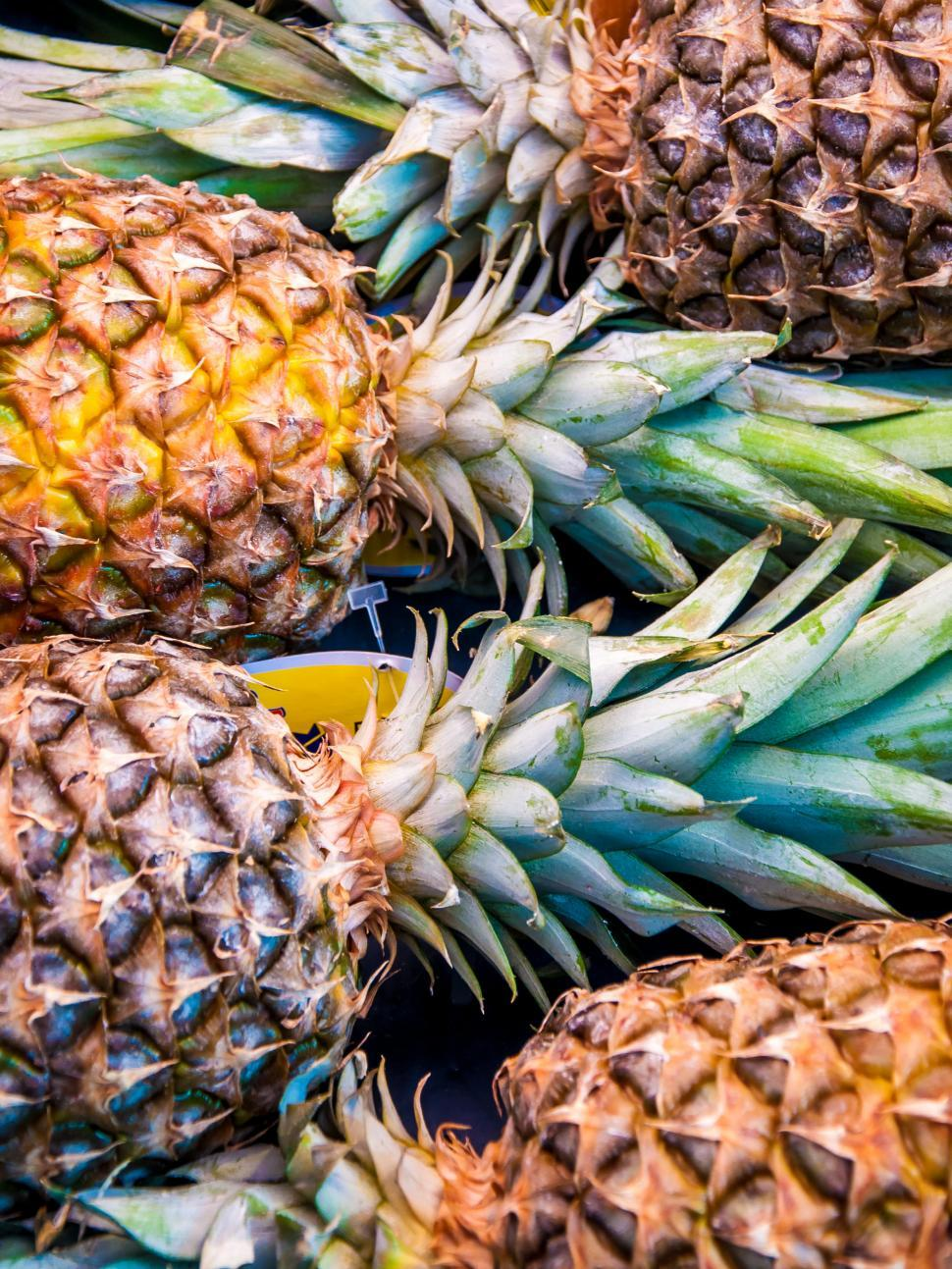 Download Free Stock HD Photo of A lot of pineapple fruit background Online