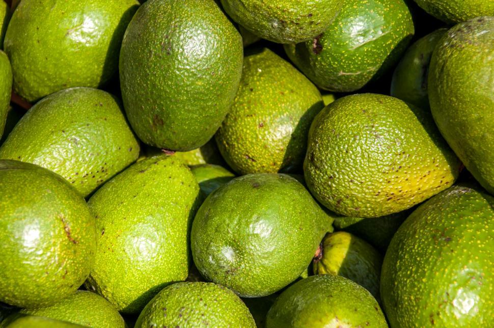 Download Free Stock HD Photo of Avocado background on a market stail Online