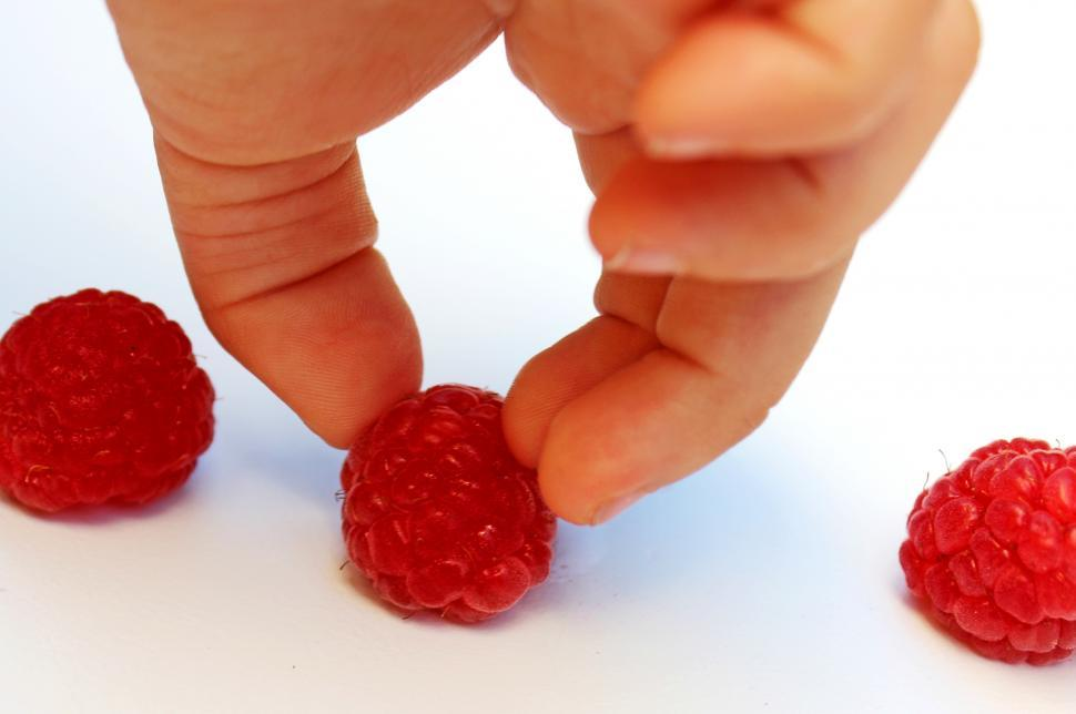 Download Free Stock HD Photo of Hand-picking a raspberry Online