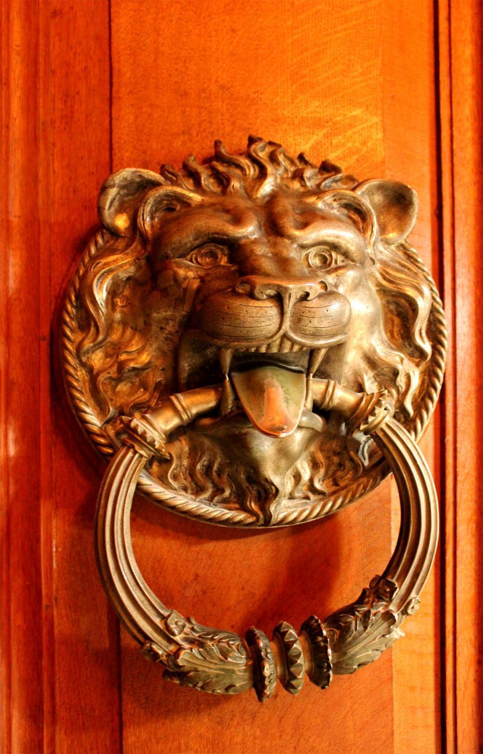 Free Image Of Ornate Ancient Door Knocker   Lionu0027s Head   In Quinta Da  Regaleira,