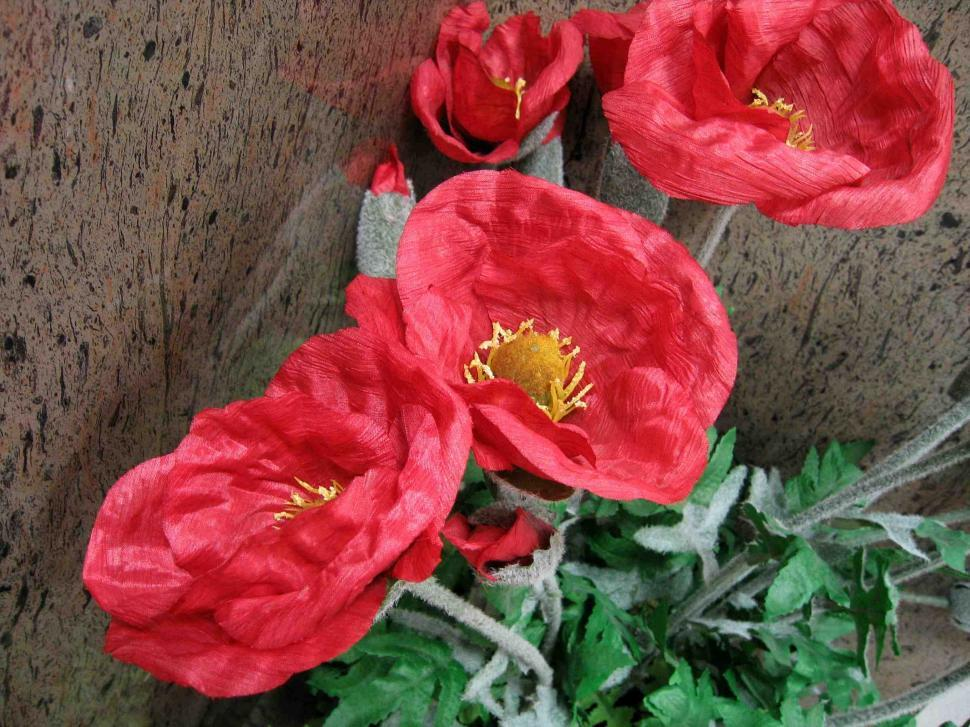 Download Free Stock HD Photo of Decorative flower Online
