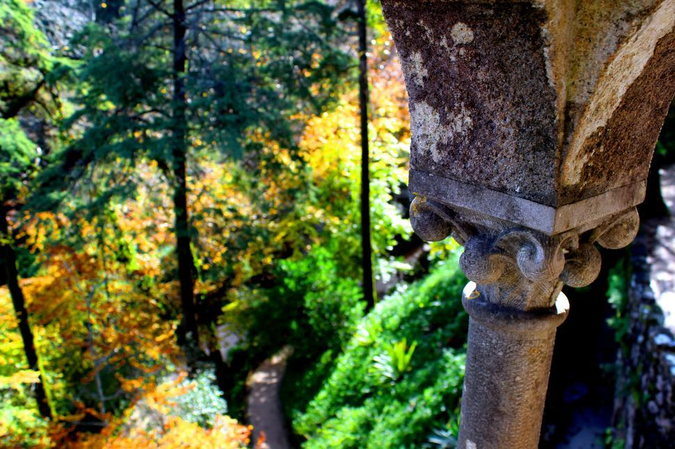 Download Free Stock HD Photo of View onto the woods Online
