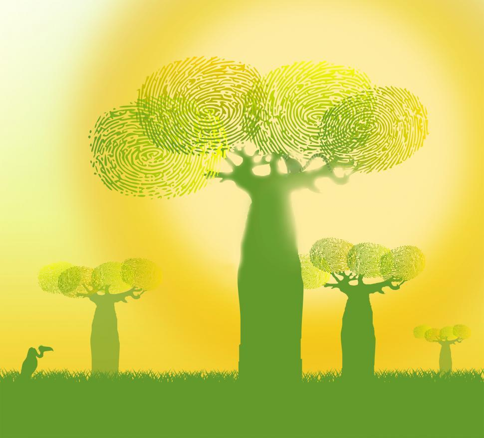 Download Free Stock HD Photo of Ecology Concept - Fingerprints on Baobab Trees - Green and Yello Online