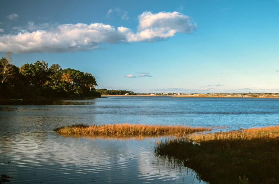 Download Free Stock HD Photo of National Wildlife Refuge in Ogunquit, Maine Online