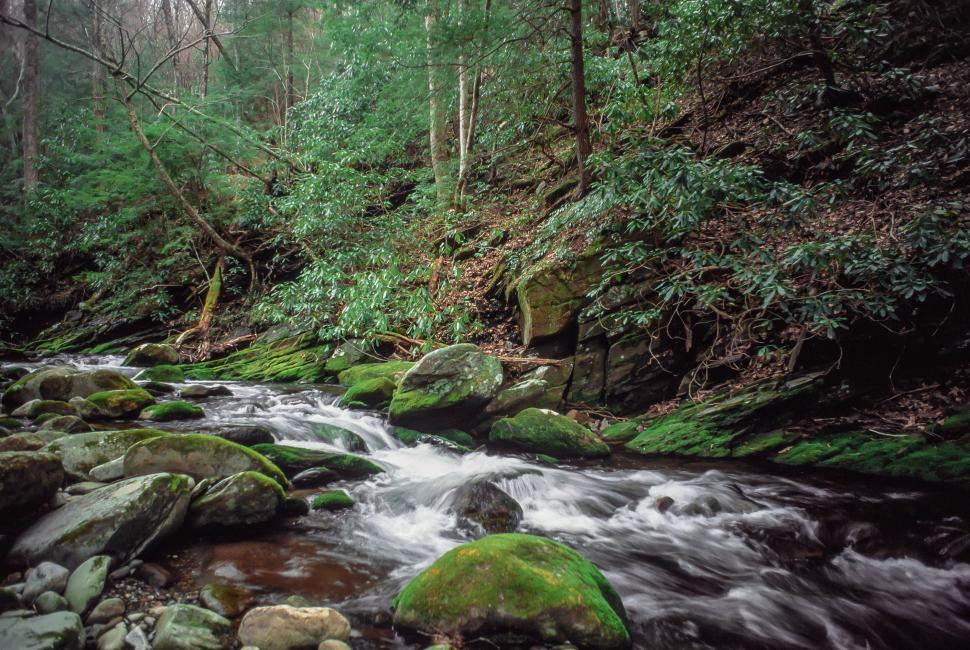 Download Free Stock HD Photo of Roaring Fork Falls Online