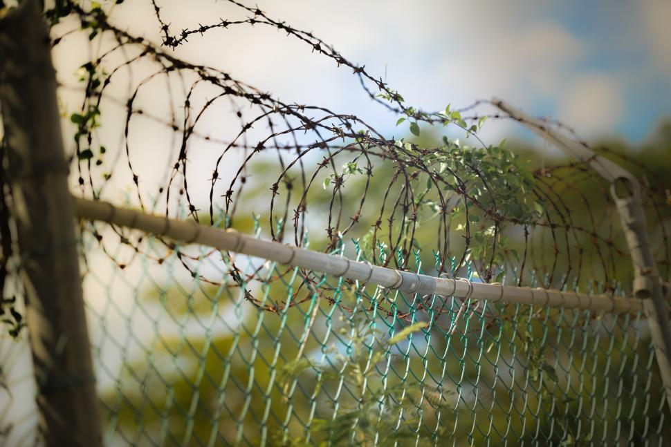Download Free Stock HD Photo of Barbed wire fence Online