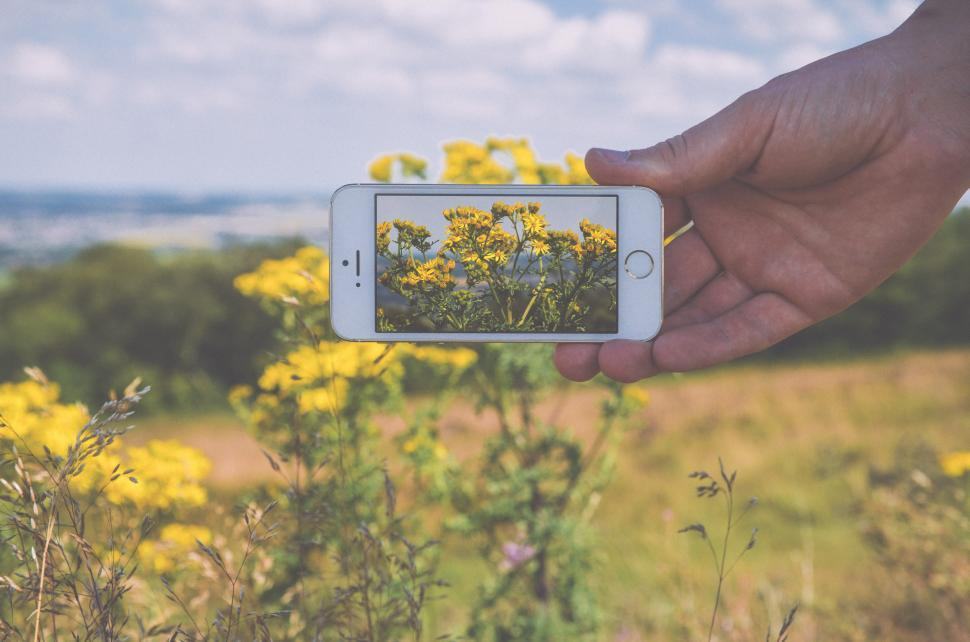 Download Free Stock HD Photo of Mobile phone photography Online