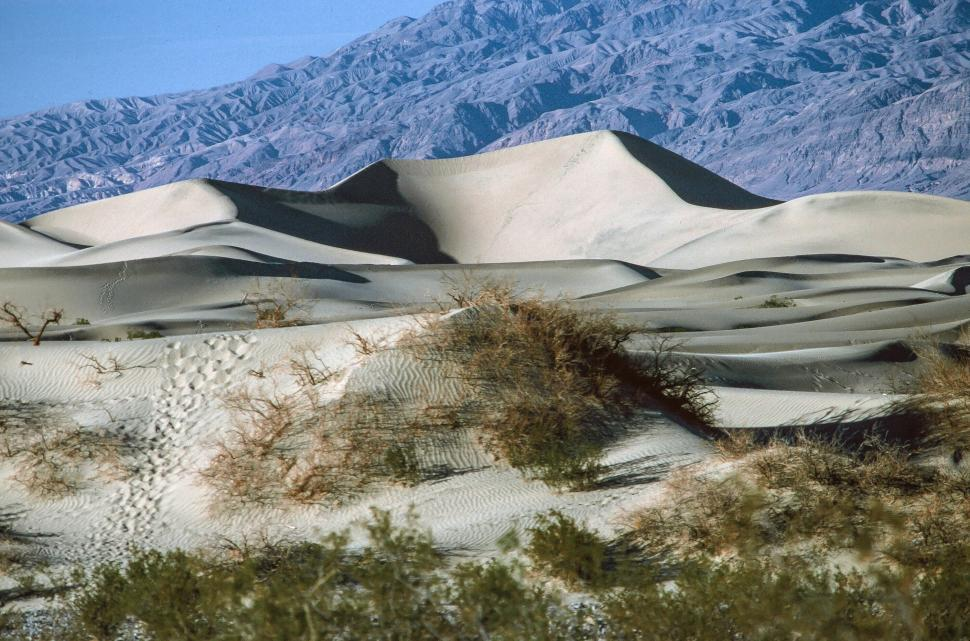 Download Free Stock HD Photo of White Sand dunes Online