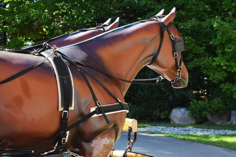 Download Free Stock HD Photo of Replica Carriage Horses Online