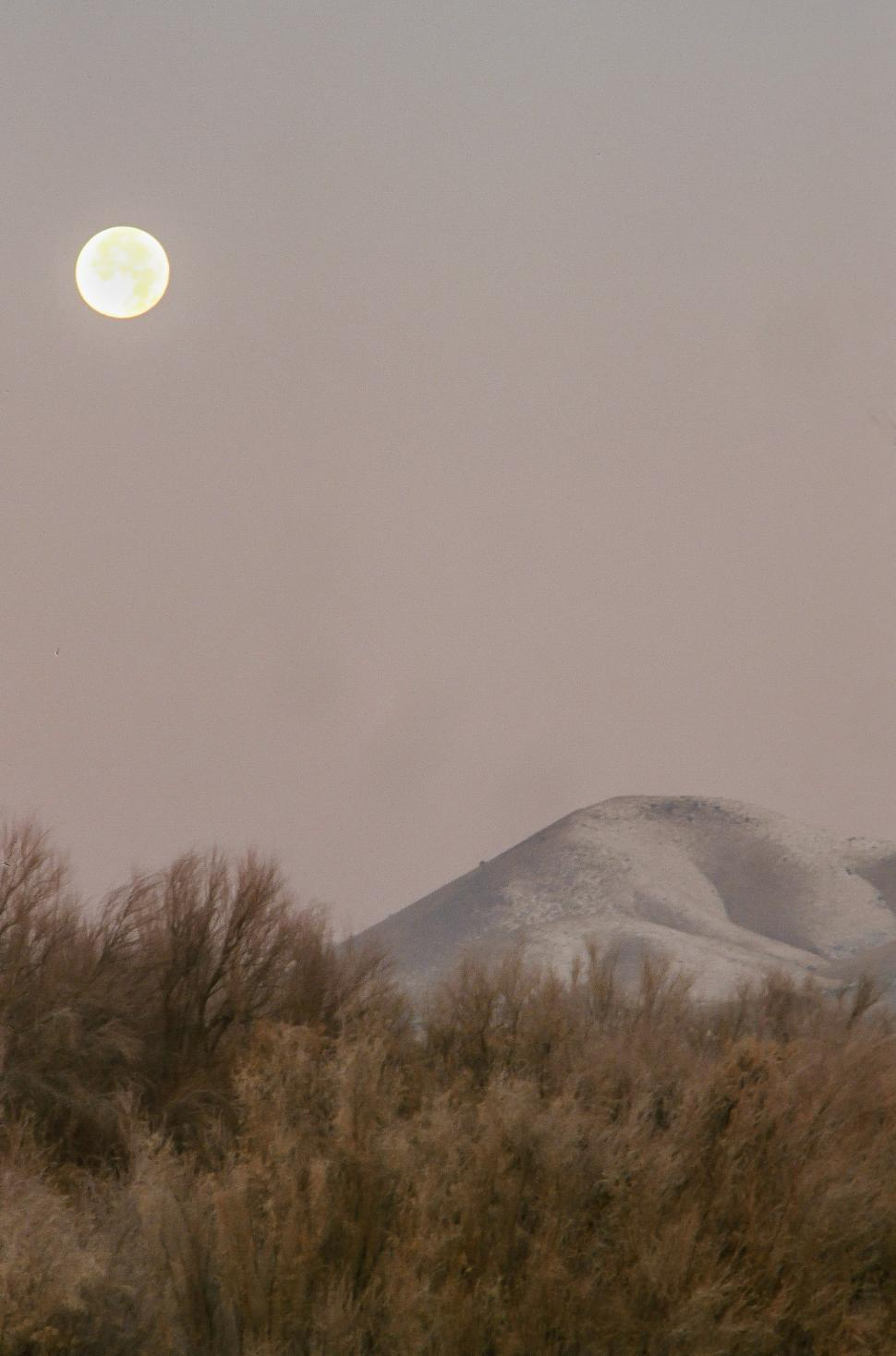Download Free Stock HD Photo of Moonset at Bosque del Apache Online