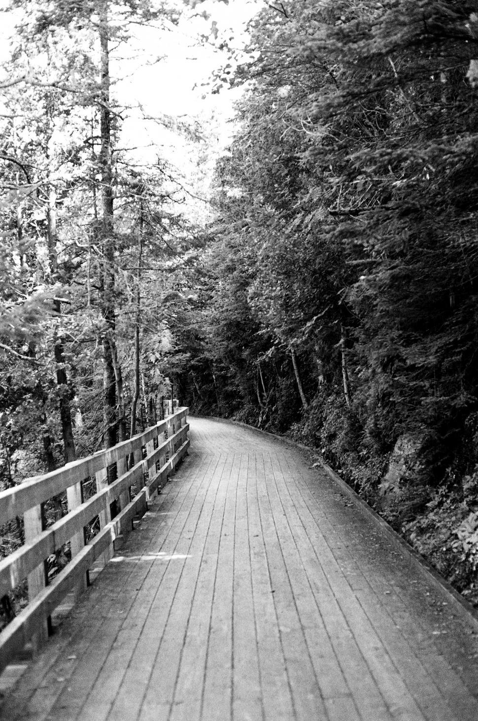 Download Free Stock HD Photo of Black and white path Online