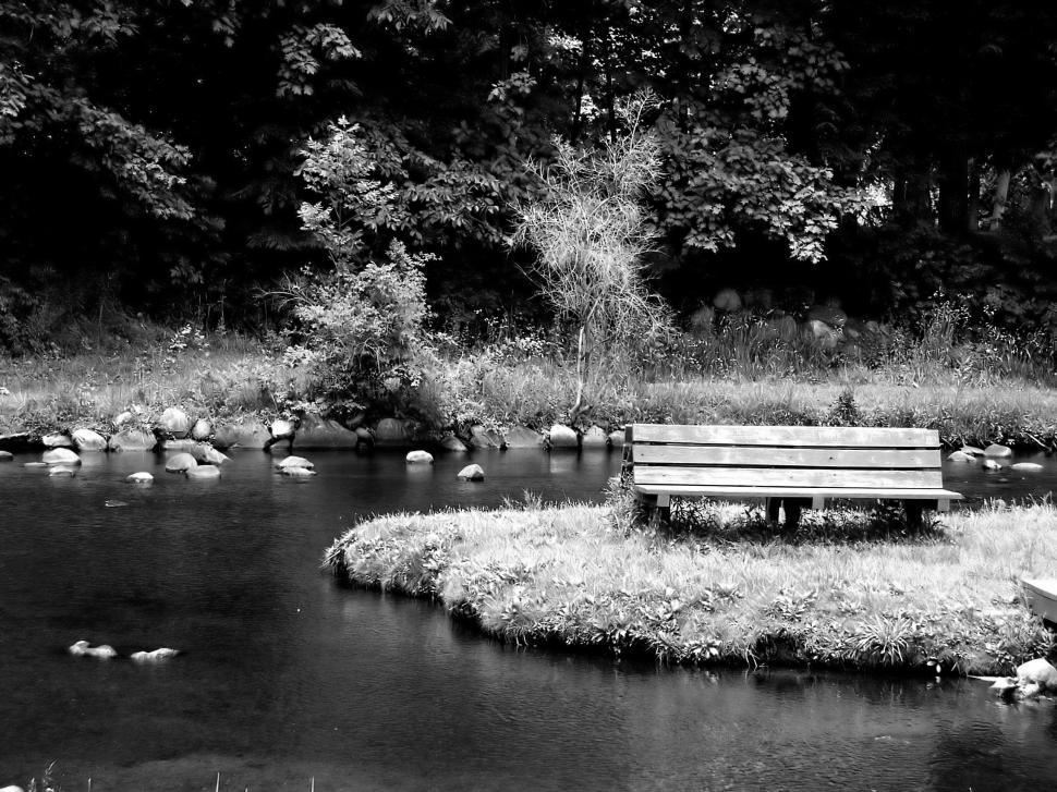 Download Free Stock HD Photo of Empty Park Bench Online