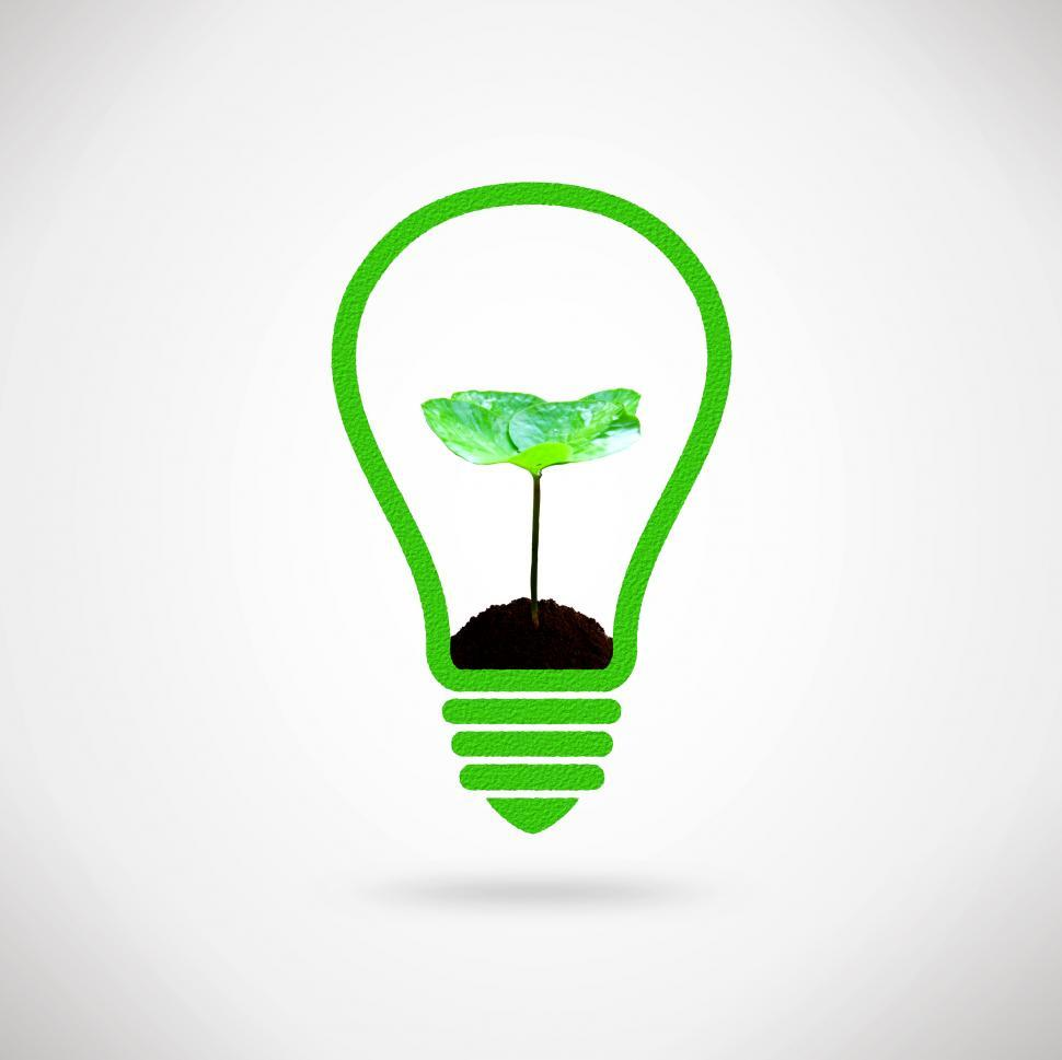 Download Free Stock HD Photo of Lightbulb and plant sprout Online