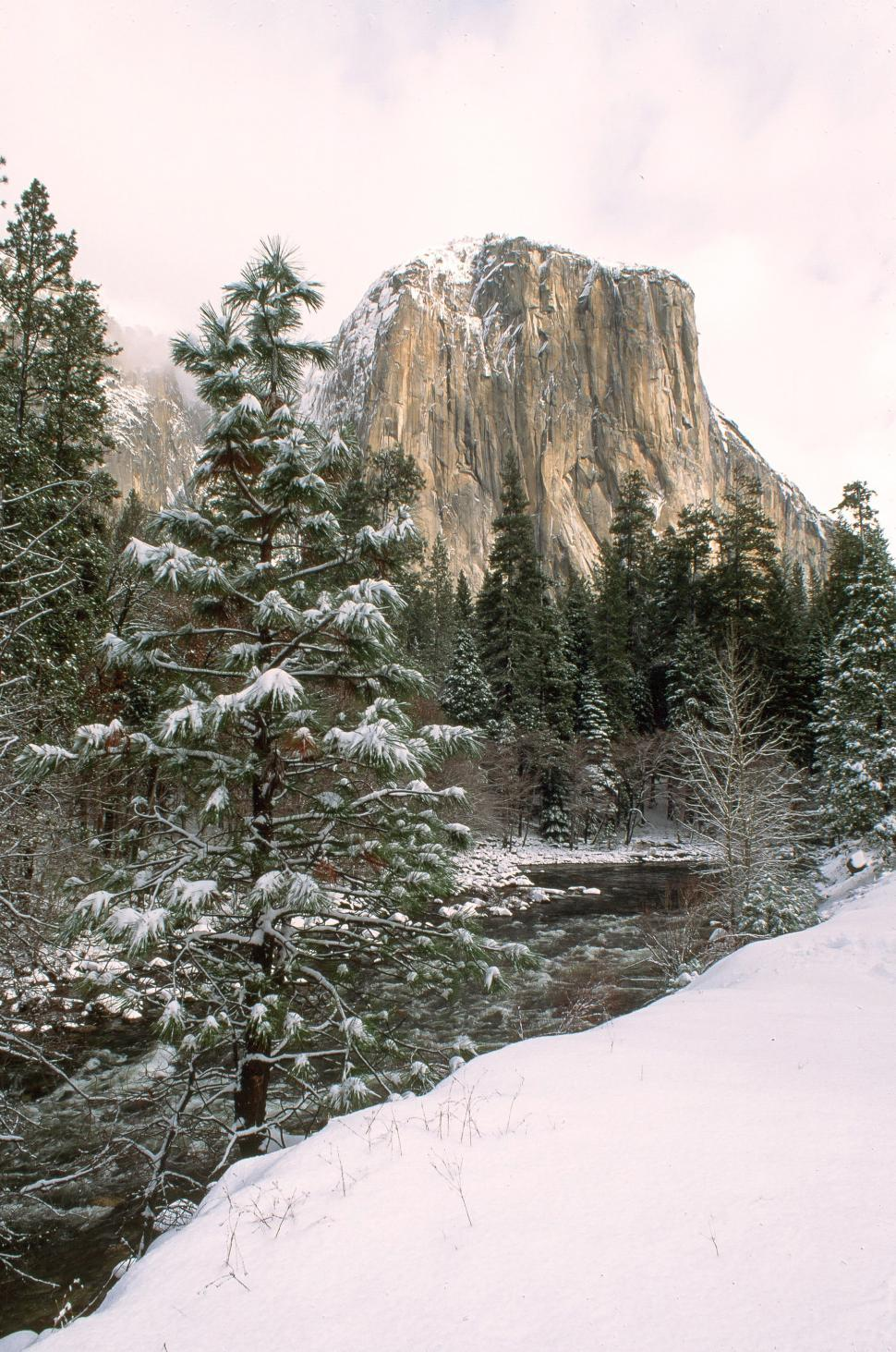 Download Free Stock HD Photo of El Capitan in California Online
