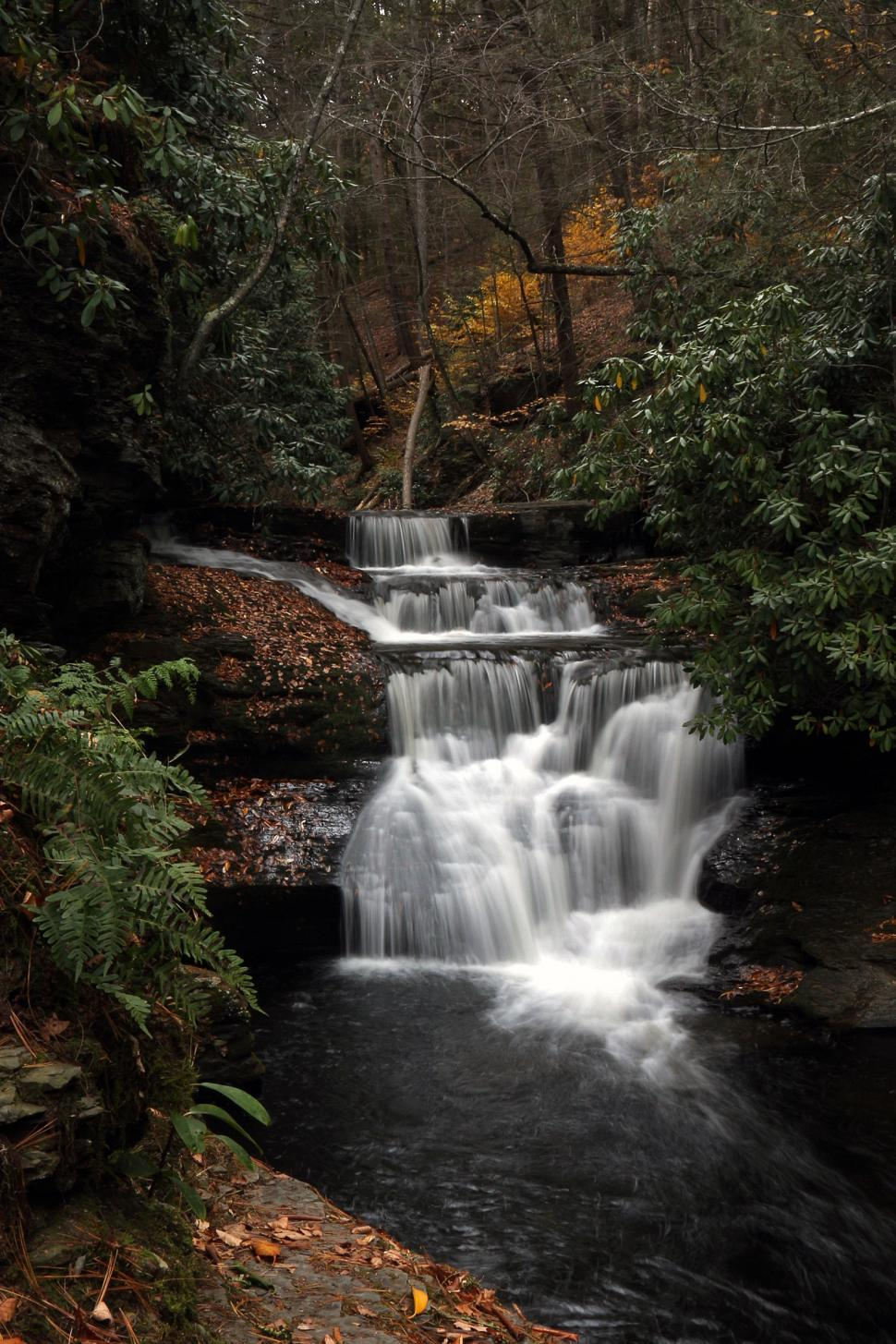 Download Free Stock HD Photo of Dingmans Creek Up Stream of Dingmans Falls Online
