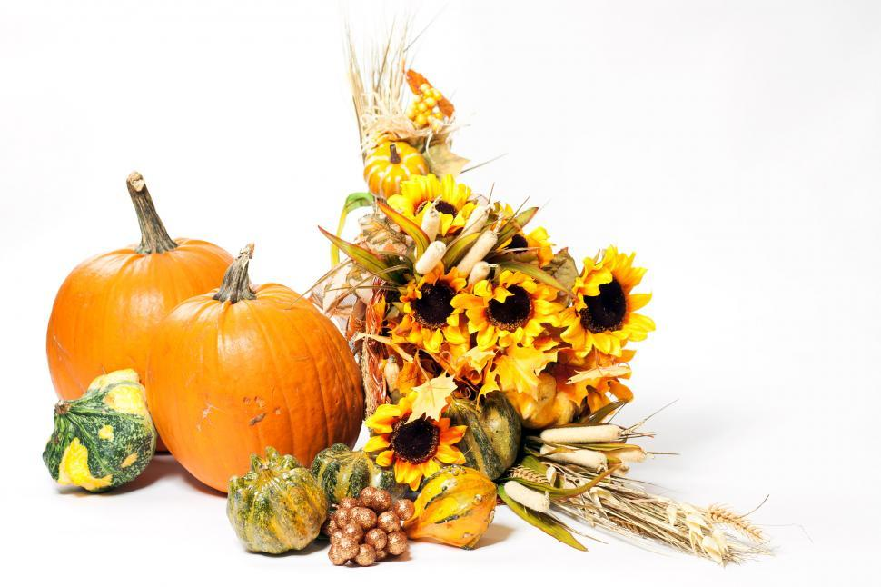 Download Free Stock HD Photo of Fall cornucopia on a White back ground Online