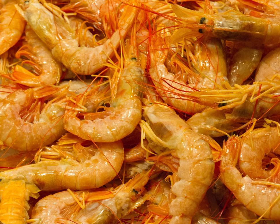 Download Free Stock HD Photo of Shrimp at fishmarket Online