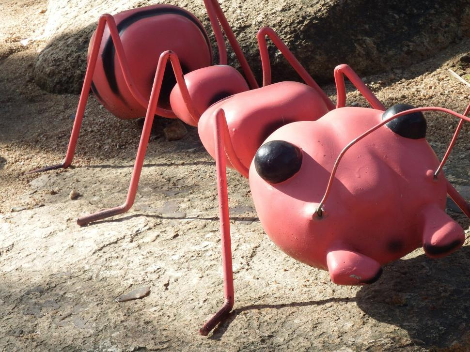 Download Free Stock HD Photo of Large Ant Model  Online