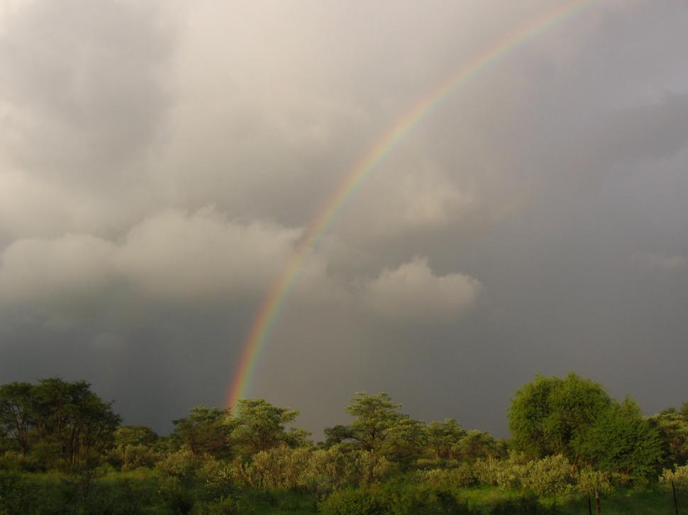 Download Free Stock HD Photo of Rainbow over veld Online
