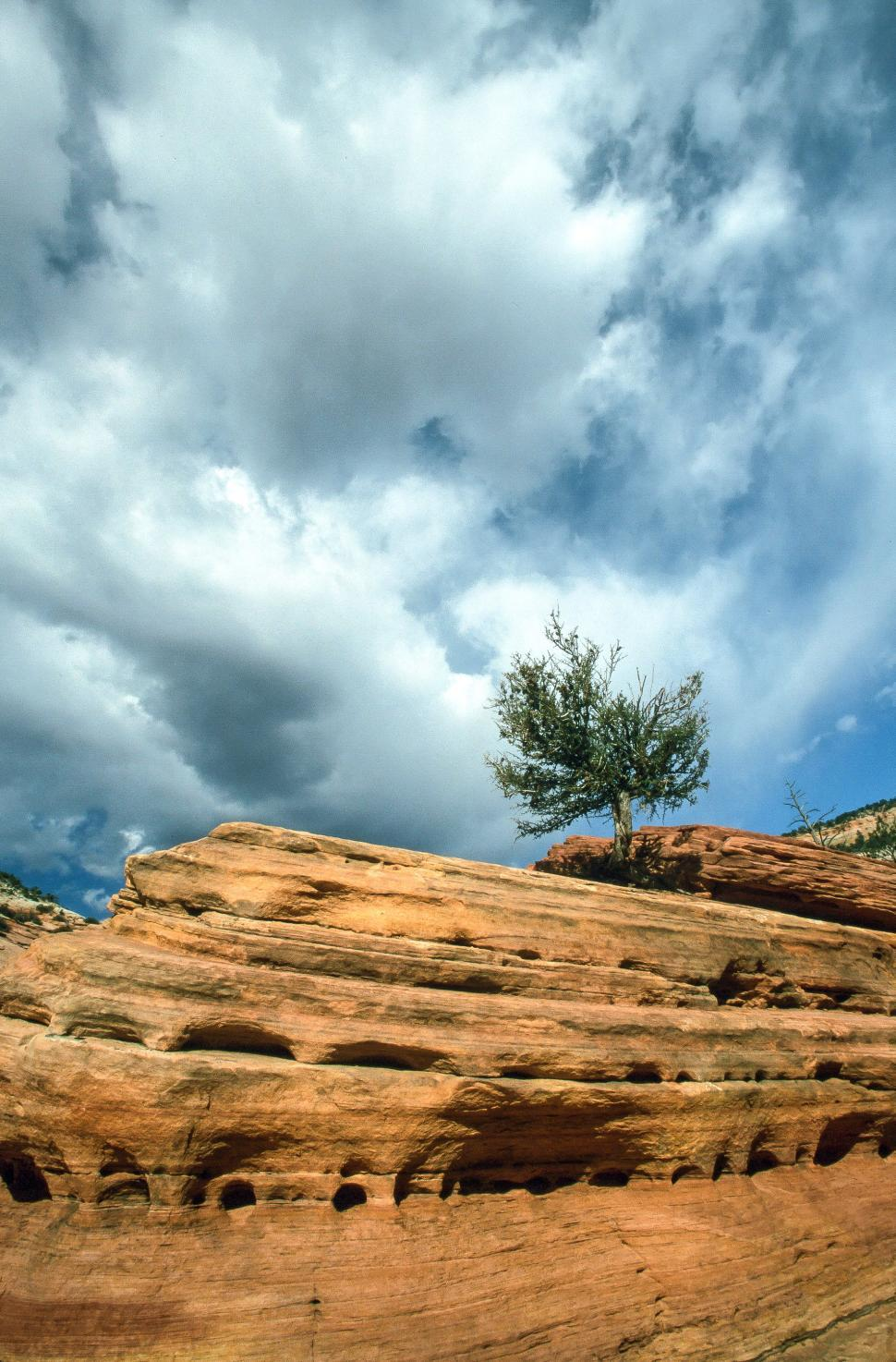 Download Free Stock HD Photo of Erosion at Zion National Park Online