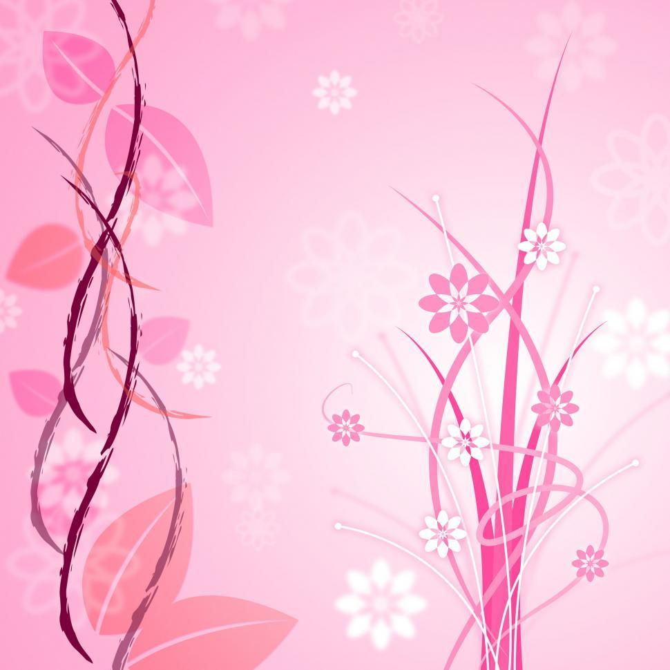 Get Free Stock Photos Of Pink Floral Indicates Bloom Backgrounds
