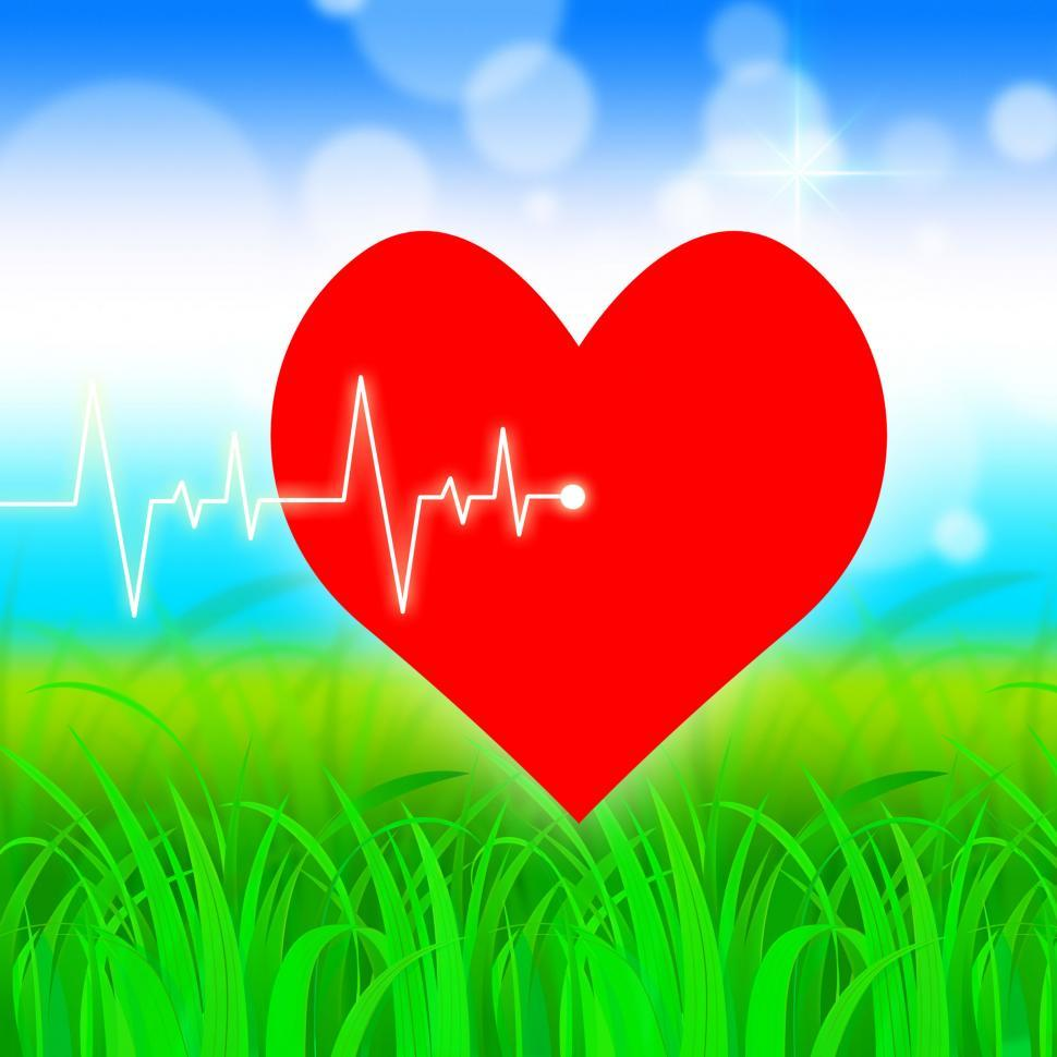 Download Free Stock HD Photo of Heart Pulse Represents Valentine Day And Cardiology Online