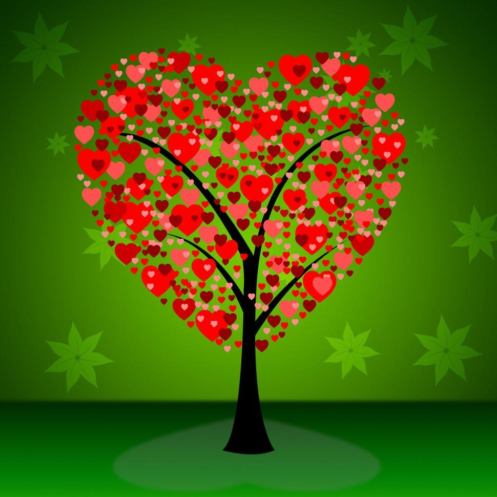 Download Free Stock HD Photo of Tree Hearts Indicates Valentine s Day And Forest Online