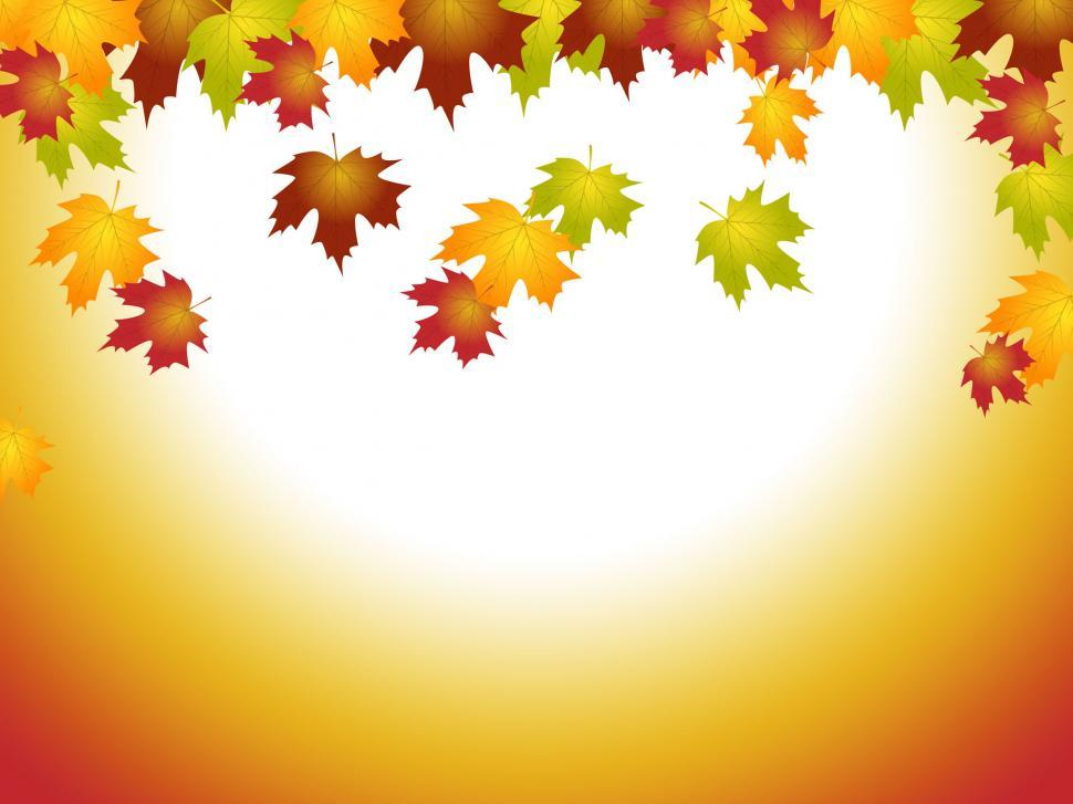 Download Free Stock HD Photo of Fall Leaves Means Text Space And Blank Online