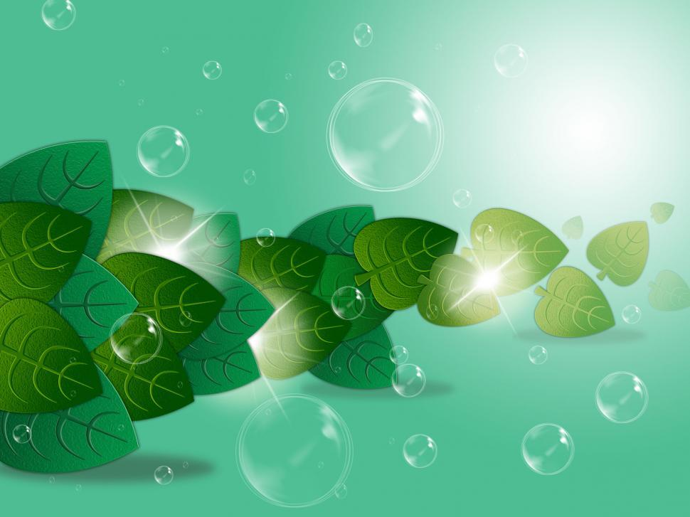Download Free Stock HD Photo of Bubbles Leaves Represents Garden Rural And Trees Online