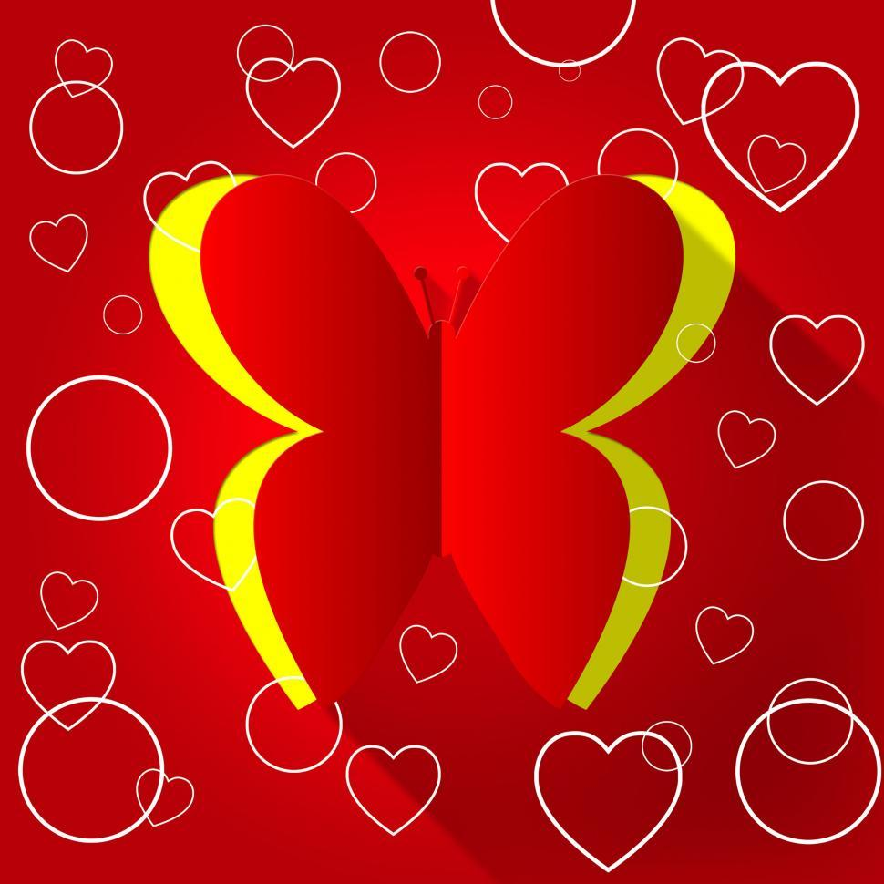 Download Free Stock HD Photo of Nature Butterflies Indicates Valentine Day And Animals Online