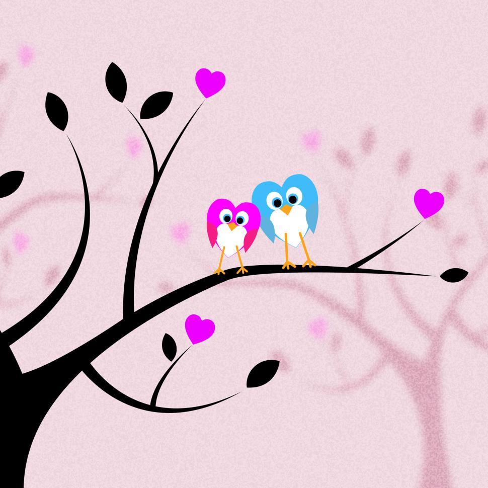 Download Free Stock HD Photo of Heart Together Means Valentine s Day And Bird Online