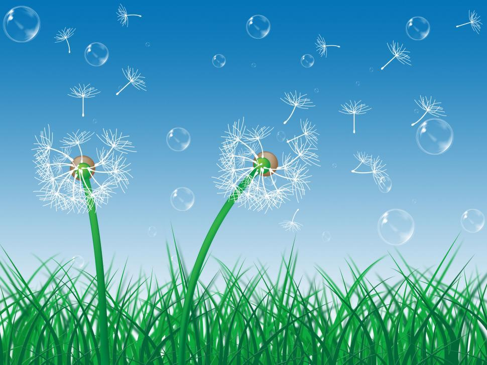 Download Free Stock HD Photo of Dandelion Sky Indicates Green Grass And Environment Online