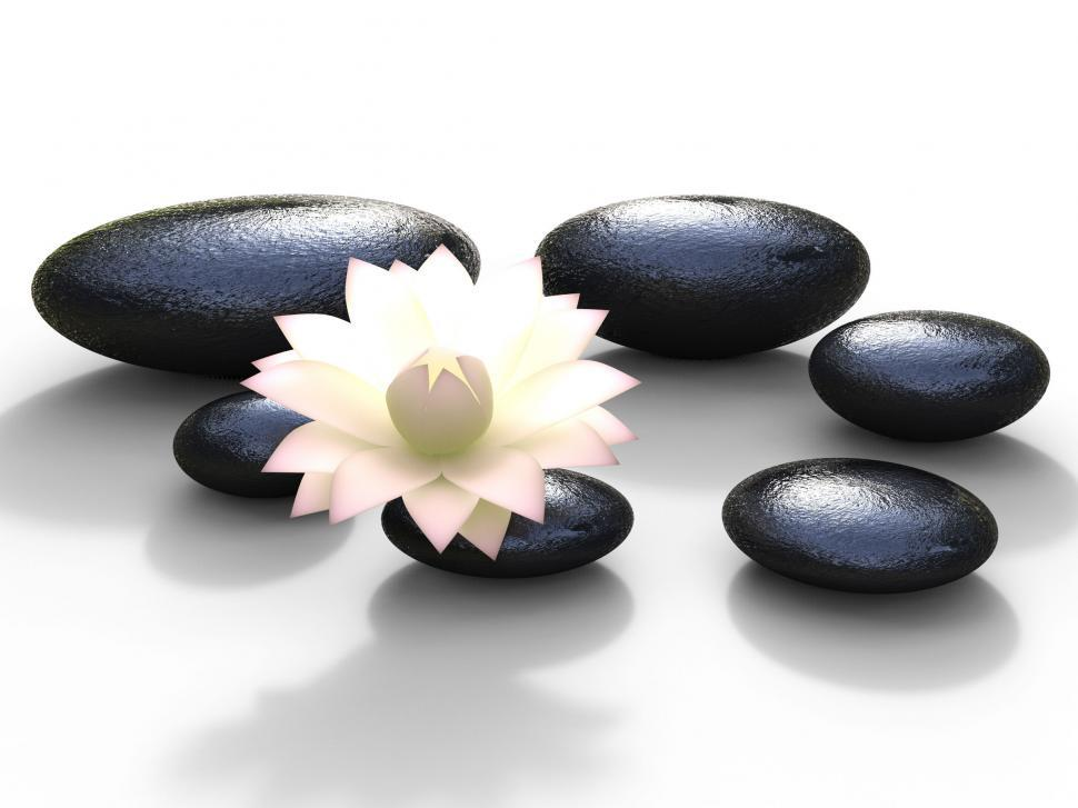 Free Stock Photo Of Spa Stones Represents Bloom Peaceful And Spirituality Online Download Latest Free Images And Free Illustrations