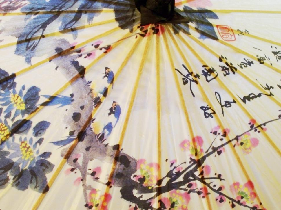 Download Free Stock HD Photo of Paper Parasol Online