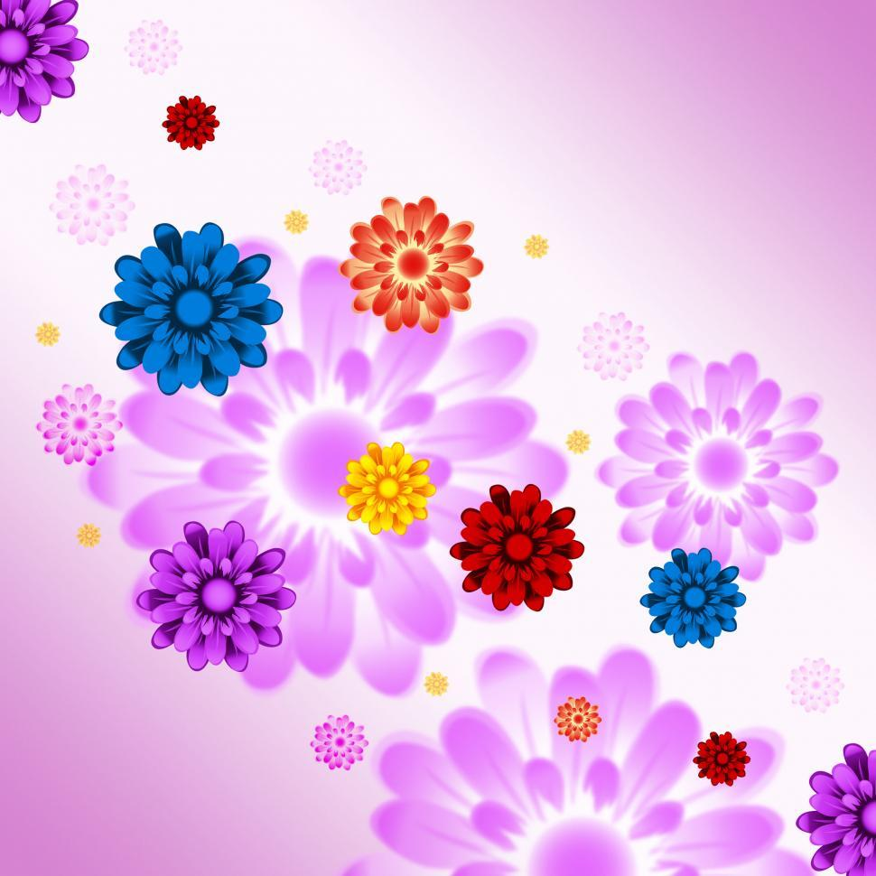 Download Free Stock HD Photo of Colorful Flowers Background Means Plants And Gardening  Online