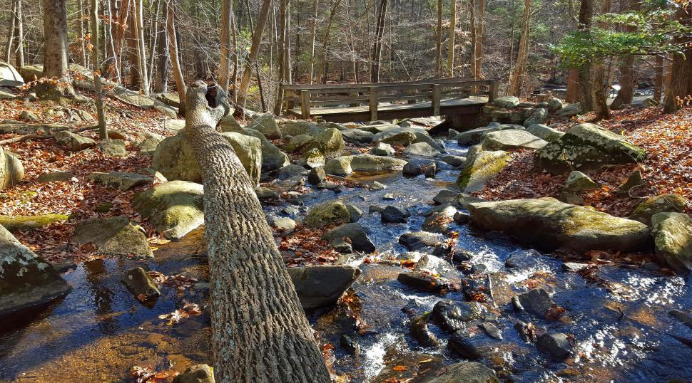 Download Free Stock HD Photo of Wooden Bridge Crossing Brook with Boulders and Fallen Tree at Ha Online