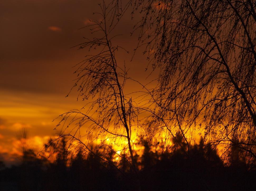Download Free Stock HD Photo of Orange Sunset  Online