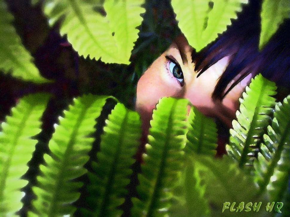 Download Free Stock HD Photo of Peek a Boo MaxPeek a Boo Max Online