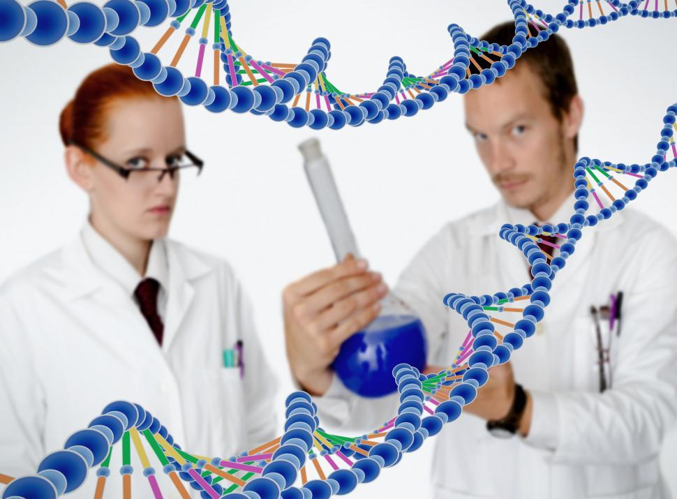 Download Free Stock HD Photo of Medical Doctors Performing DNA Analysis Online