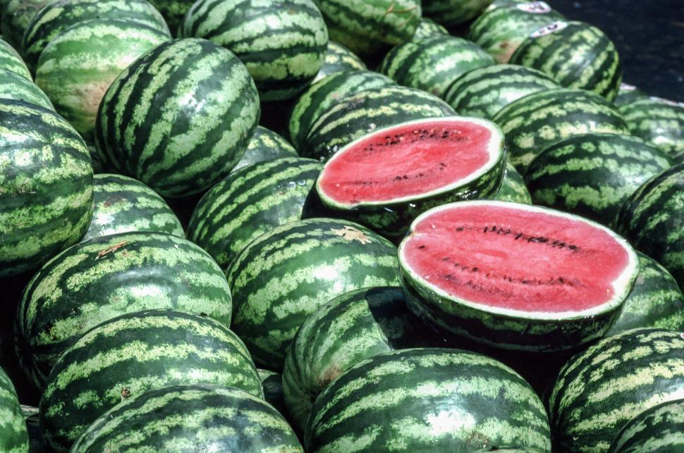 Download Free Stock HD Photo of Watermelons at Faneuil Hall Marketplace Online