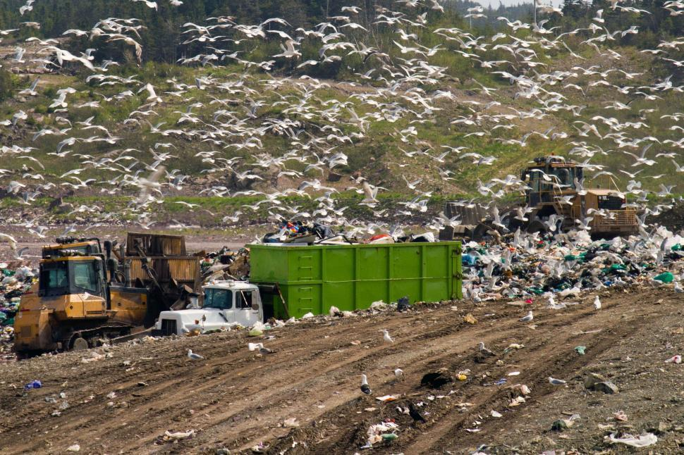 Download Free Stock HD Photo of Landfill Equipment Online