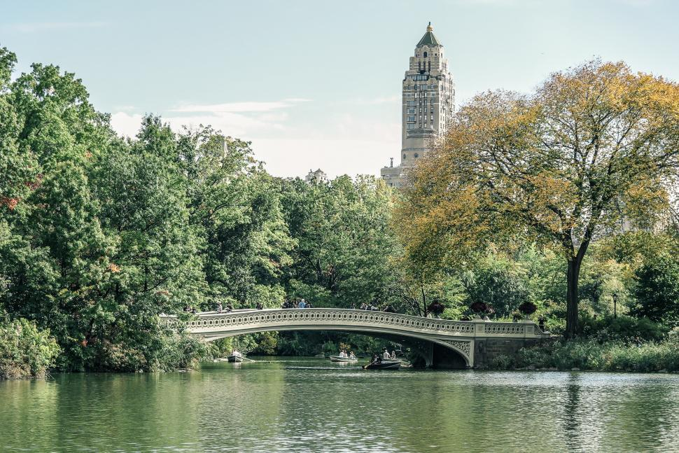 Download Free Stock HD Photo of Boats and Bridge in Central Park Online